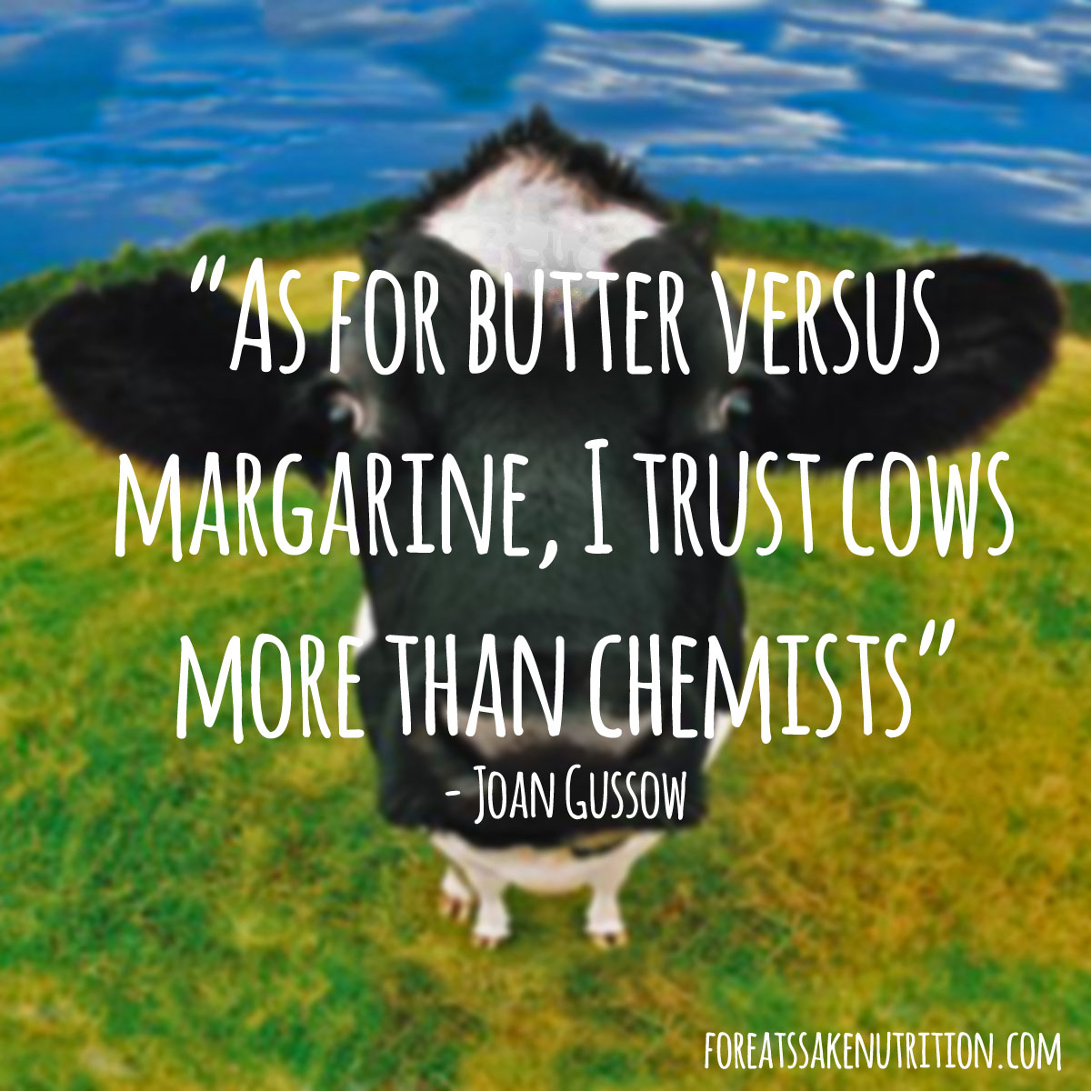 As for butter versus margarine, I trust cows more than chemists.